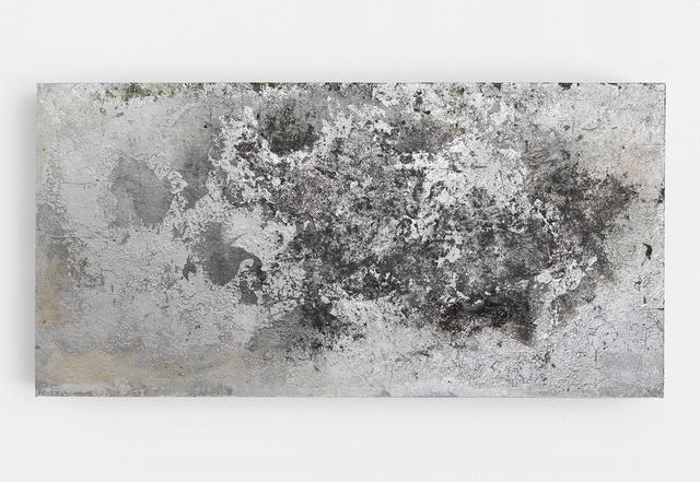 , 'Birch,' 2016, David Klein Gallery