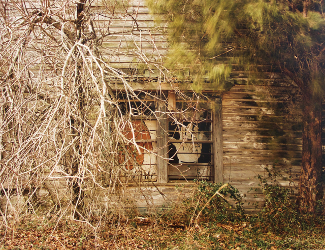 , 'Windows of Psalmist Building, (winter),' 1981, David Lusk Gallery