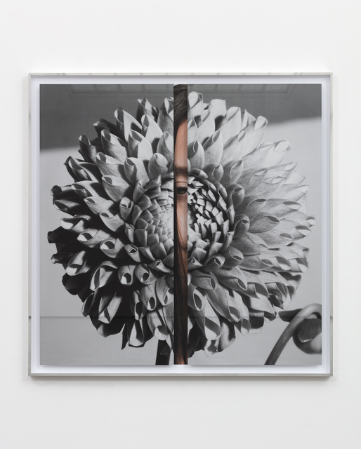 Kathryn Andrews, 'Hollywood Dahlia', 2019, Painting, Stainless steel, aluminum, glass, ink, and paint, MCA Chicago Benefit Auction