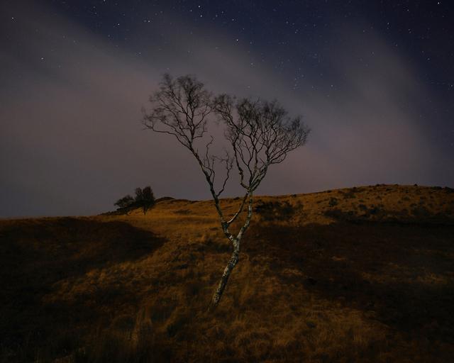, 'Charnel Clough, Saddleworth Moor,' 2016, ElliottHalls