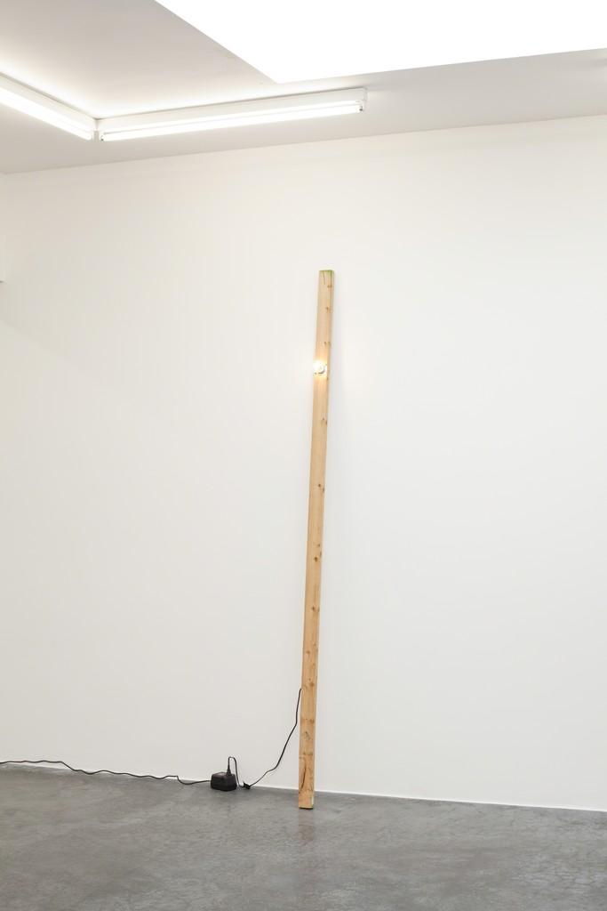 Virginia Overton, 'Untitled (green ends),' 2012, Freymond-Guth Fine Arts Ltd.