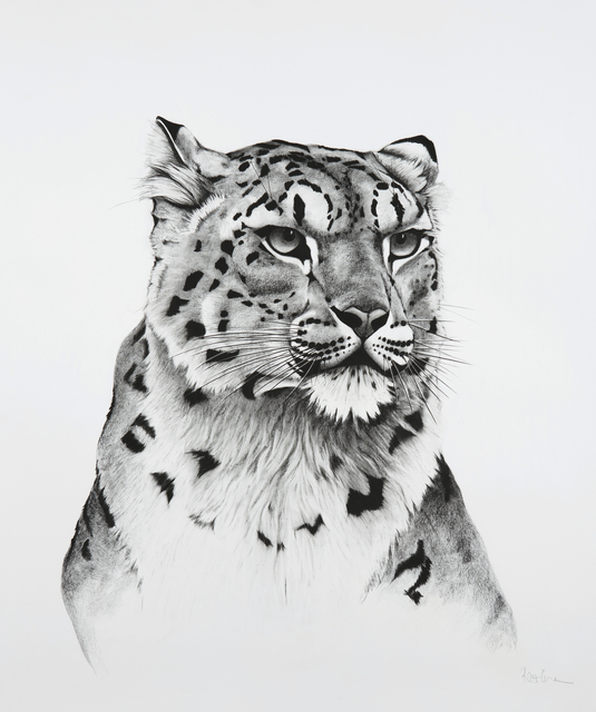 , '22. Snow Leopard Turned,' 2018, Sladmore Contemporary