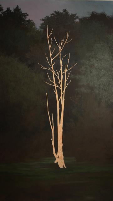 , 'Pine 3,' 2017, Diehl Gallery