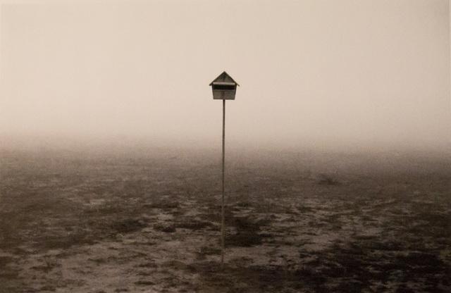 Rui Moreira, 'Sem Título', 1995, Galeria Miguel Nabinho