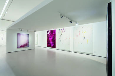 Exhibition View Hubert Scheibl – Fly, Photo: © Belvedere, Vienna