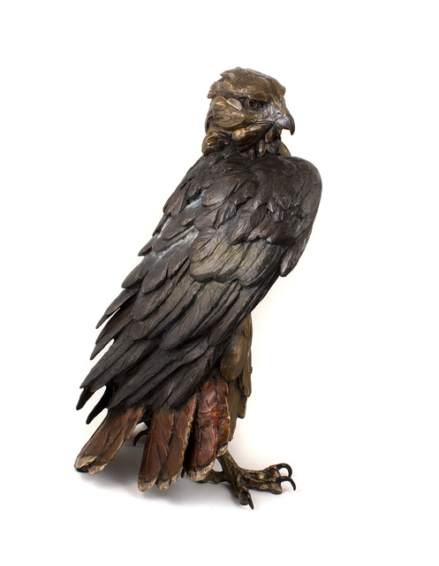 Bryce Pettit, 'Storm Front (Red-Tailed Hawk)', 2019, Blue Rain Gallery