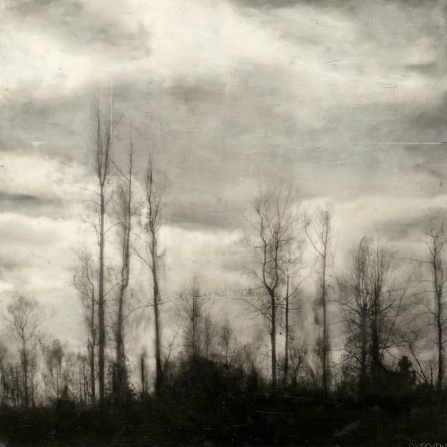 Brett Deschene, 'Tree Song', 2012, Mirada Fine Art