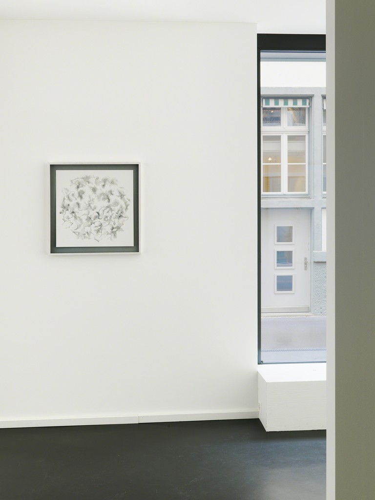 Installation View 2: Tobias Putrih, C/1aph, 2009, Ink on paper