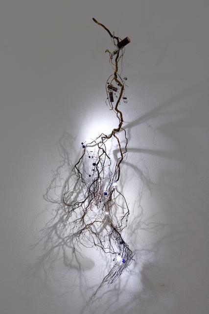 , 'Betula Version1,' 2016, Mario Mauroner Contemporary Art Salzburg-Vienna