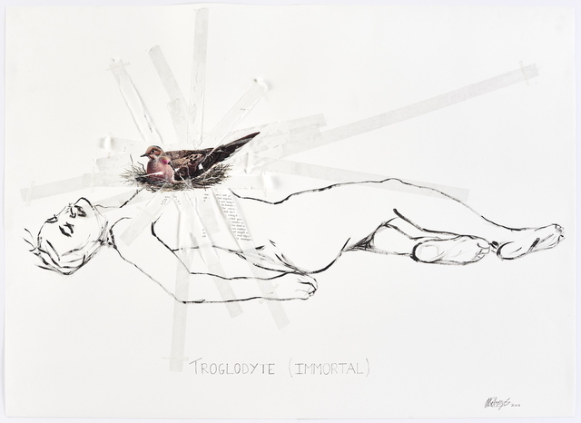 , 'Sticky-tape Transfer 24 - Troglodyte (Immortal),' 2017, Goodman Gallery