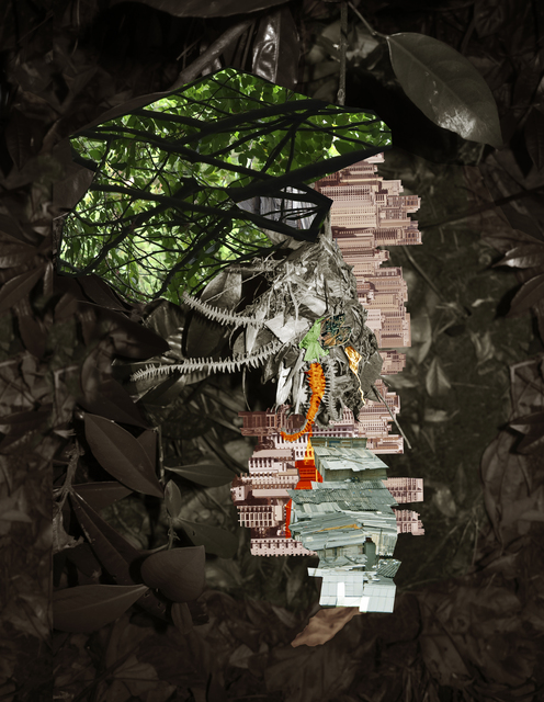 , 'Avanhandava,' 2015, Van der Mieden Gallery