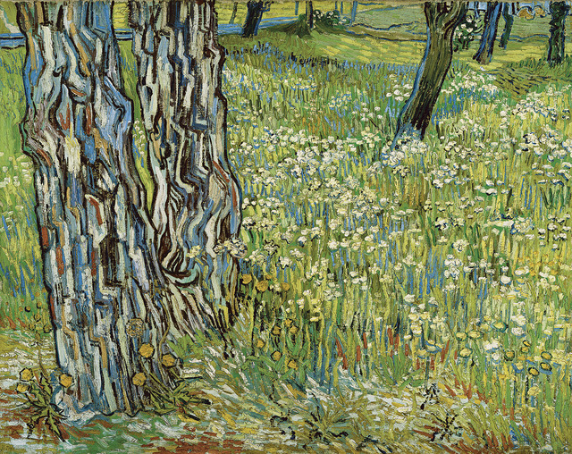 , 'Pine Trees and Dandelions in the Garden of Saint-Paul Hospital,' 1890, National Gallery of Victoria