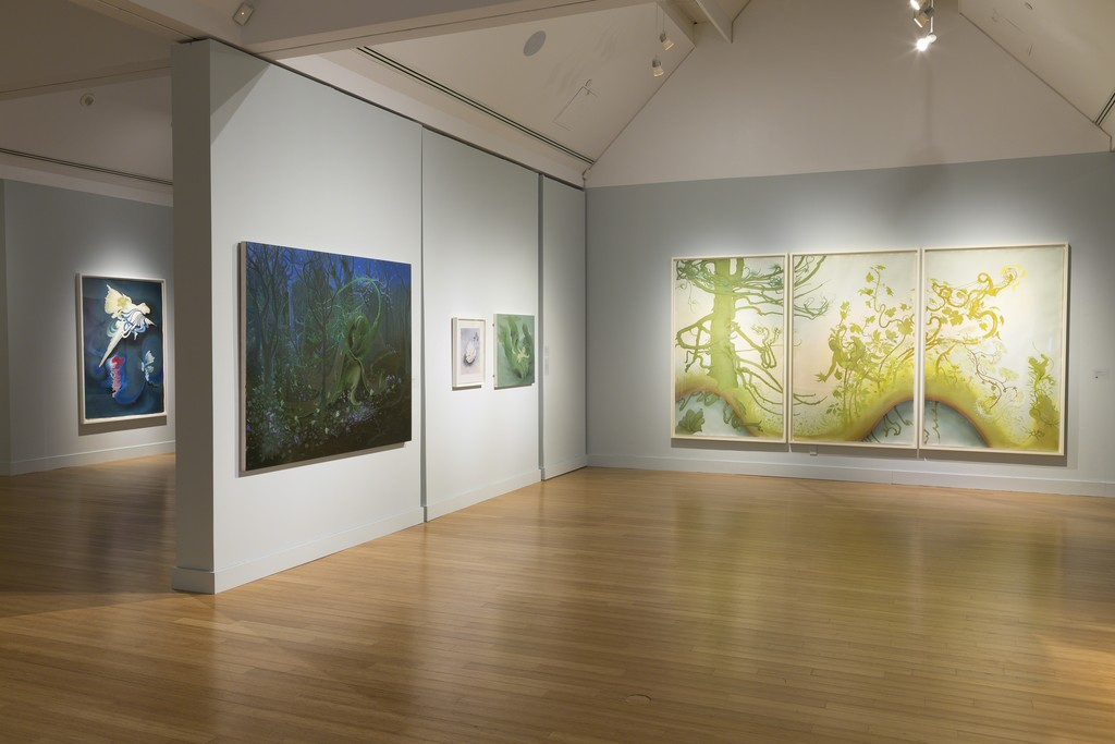 Inka Essenhigh: A Fine Line at the Virginia Museum of Contemporary Art. Photograph by Echard Wheeler