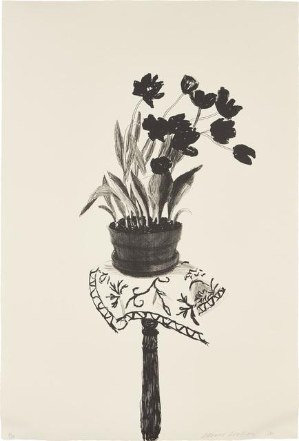 David Hockney, 'Black Tulips', 1980, Phillips