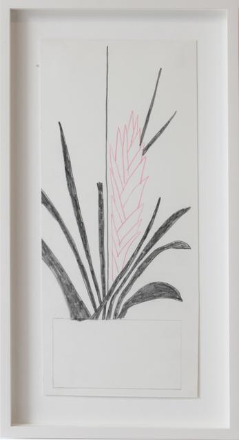 , 'Pink flower,' 2012, Simoens Gallery