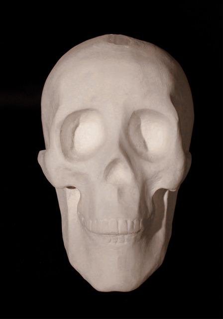 , 'Skull,' 2013, Eli Klein Gallery