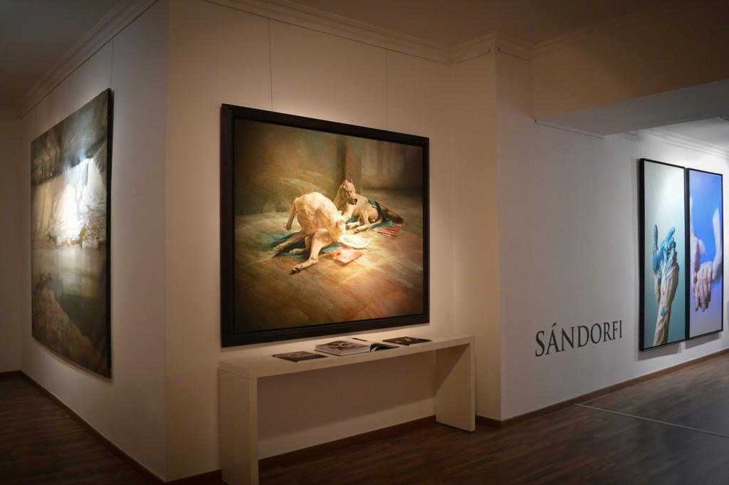 Etienne Sandorfi - Motus Motus Hommage to Culture