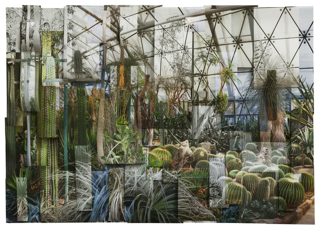 , 'Greenhouse 1,' 2017, RGR+ART