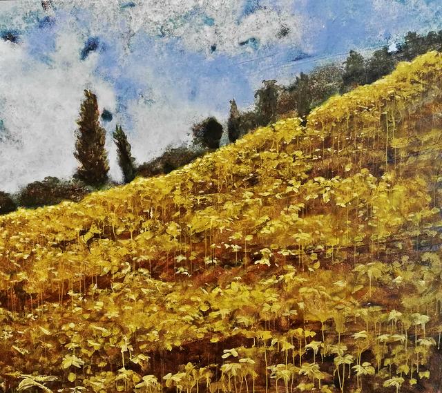 , 'Potrero #3 - Paddock #3 ,' 2012, Artflow Galeria