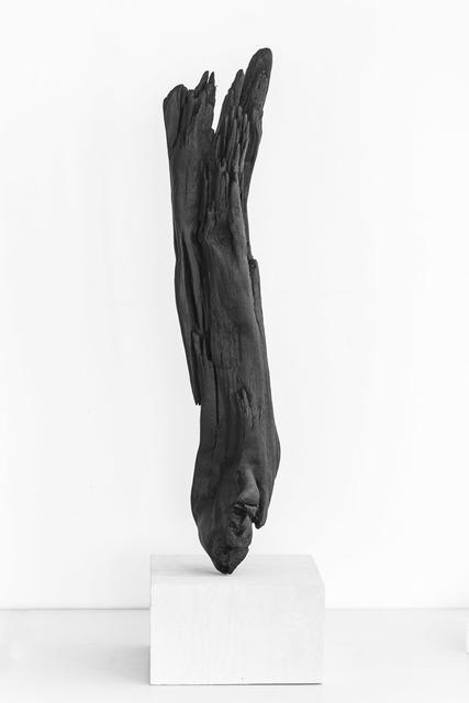 , 'Loen,' 2016, Fuglen
