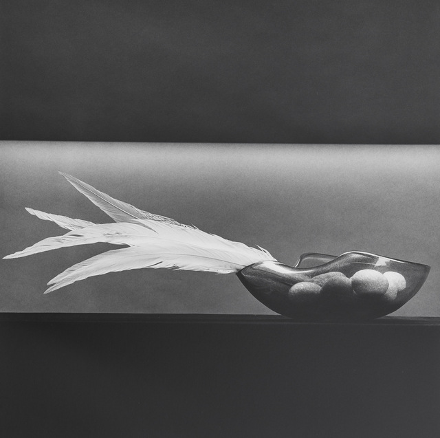 Robert Mapplethorpe, 'Feathers and Eggs', 1985, Mai 36 Galerie