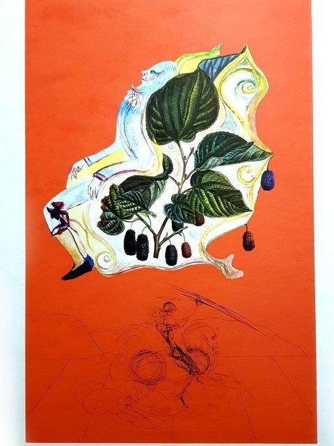 "Salvador Dalí, 'Original Lithograph ""Flordali - Blackberries"" by Salvador Dali', 1969, Galerie Philia"