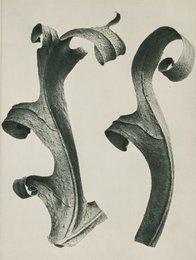 27 Book Plates from Urformen Der Kunst