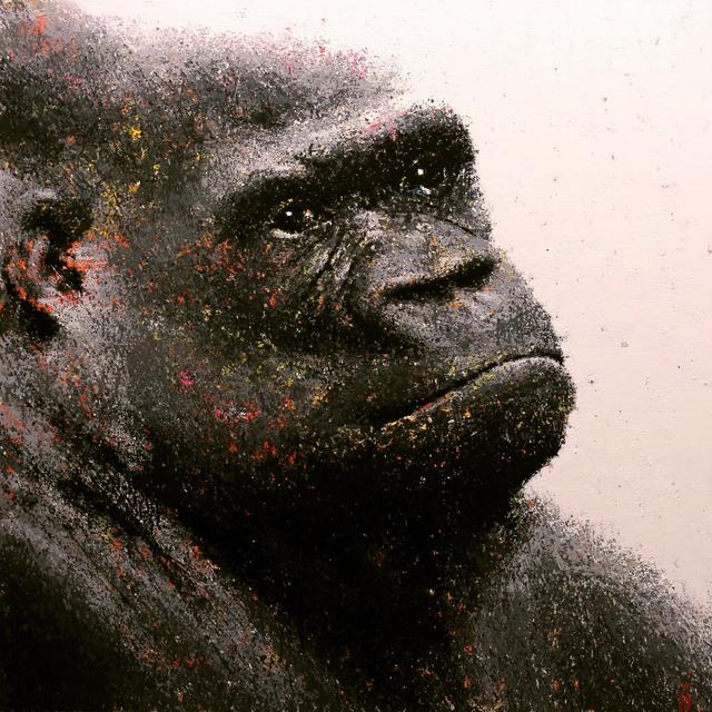 , 'Eastern Gorilla,' 2014, GALERIA JORDI BARNADAS