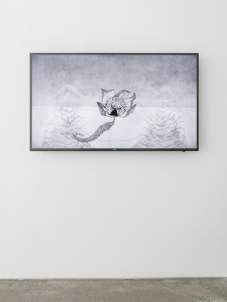 Seung Ae Lee, Becoming, 2017, pencil on paper, animation drawing, 10 mins, installation view