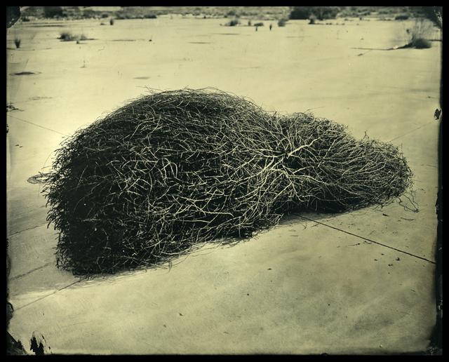 , 'Tumble Weed: LA River Canal, CA,' 2016, Corey Daniels Gallery