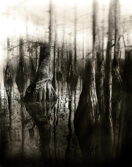 , 'Florida Trail II,' 2013, Neubacher Shor Contemporary