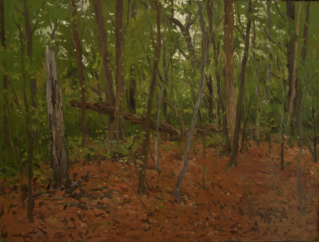Eugene Leake, 'Red and Green Turner Woods', 1982, Painting, Oil on canvas, C. Grimaldis Gallery