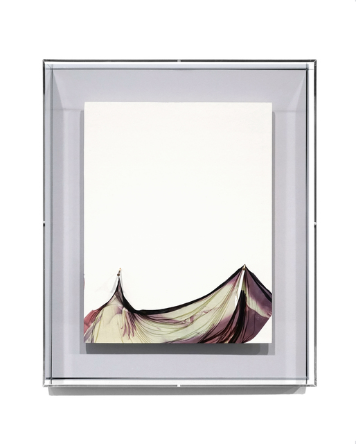 Jiang Pengyi, 'Medium No.9', 2018, Mixed Media, Polaroid emulsion lift, acid free paper, 18K gold nail, Blindspot Gallery