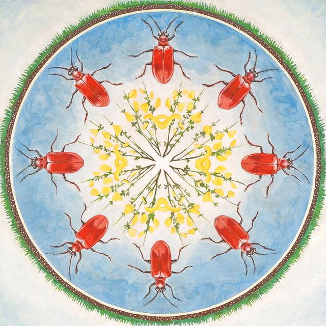, 'Scarlet Lily Beetle, Scotch Broom,' 2018, Linda Hodges Gallery