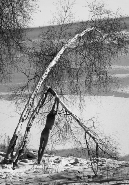 , 'Broken Birch, Fosters Pond,' 2017, WILLAS Contemporary