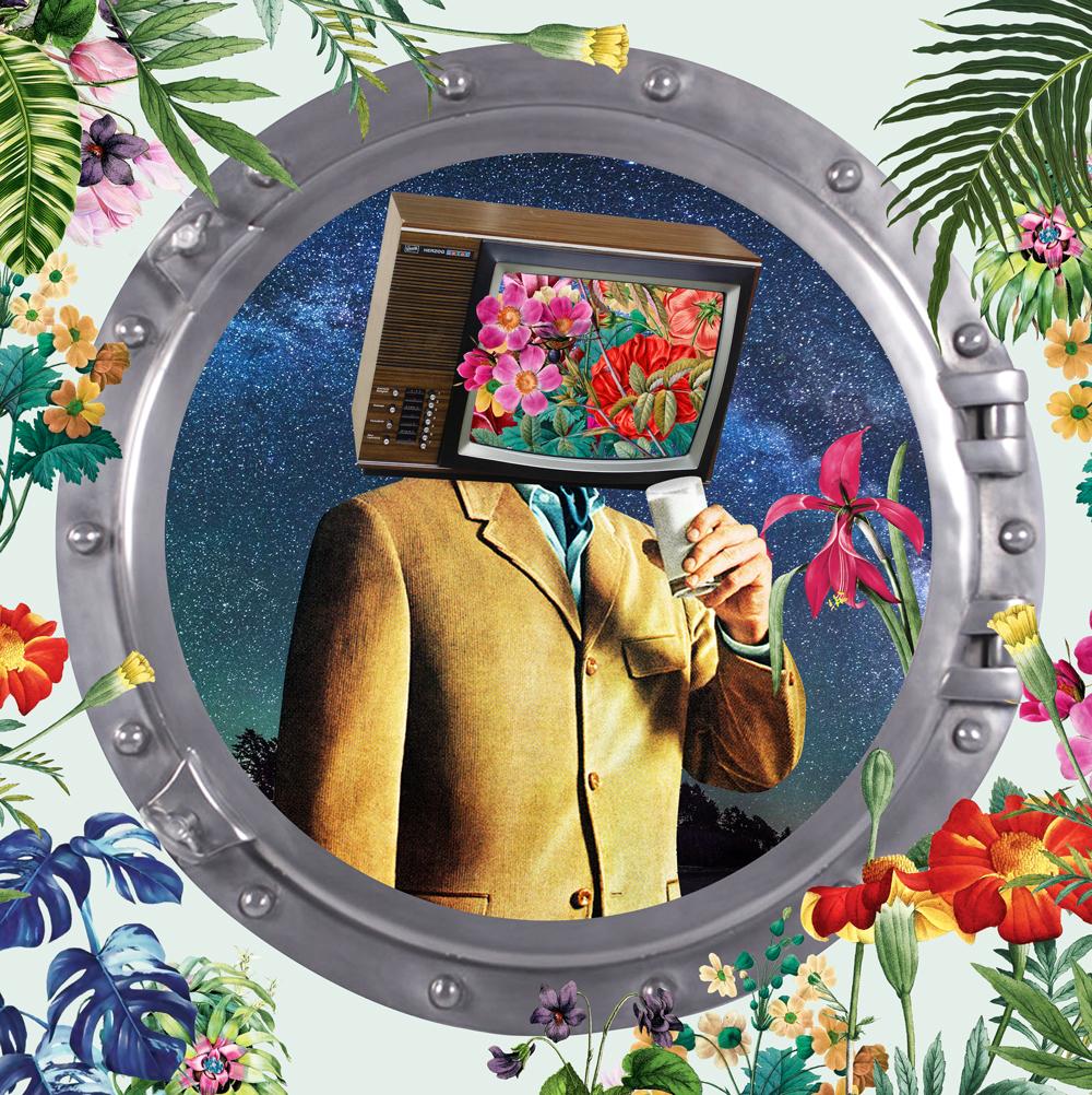 David Krovblit - TV Head