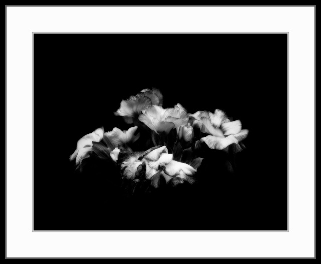 , 'Flowers #2 (Rising),' 1997, The Art of Wild Gallery