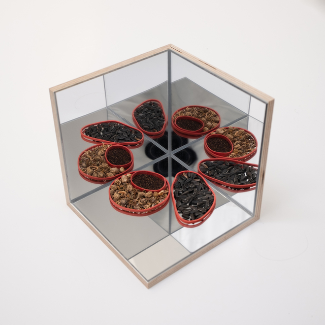 Audrey Cottin, 'Mirror Box (#4)', 2019, Installation, Wood, plexi mirror, glue and seeds, Tatjana Pieters