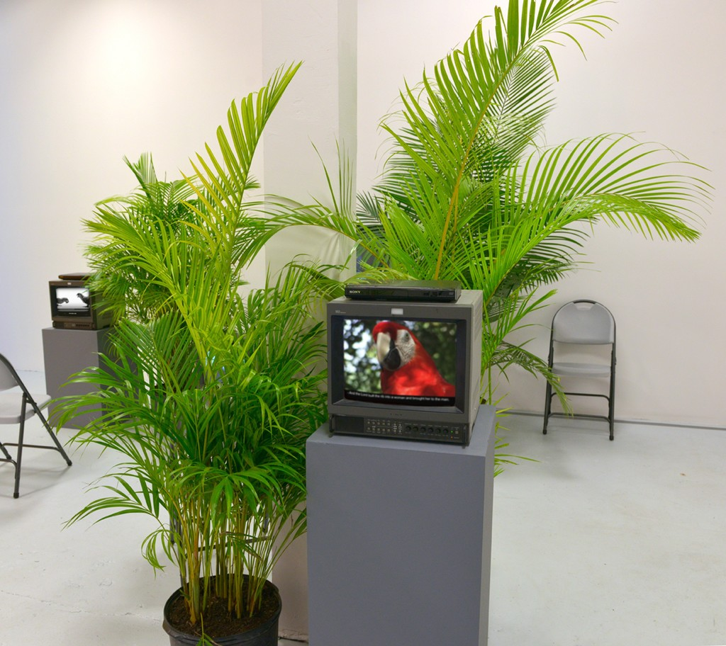 Genesis According to Parrots, installation view