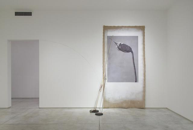 Linarejos Moreno, 'Art Forms in Mechanism XIX', 2016, Inman Gallery