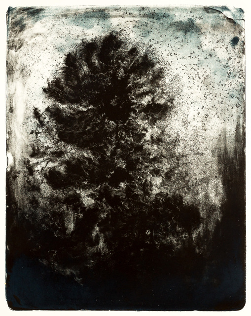 , 'Wald X(N)-XVI,' 2016, galerie burster