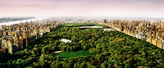 David Drebin, 'Dreams of Central Park', 2012, Isabella Garrucho Fine Art