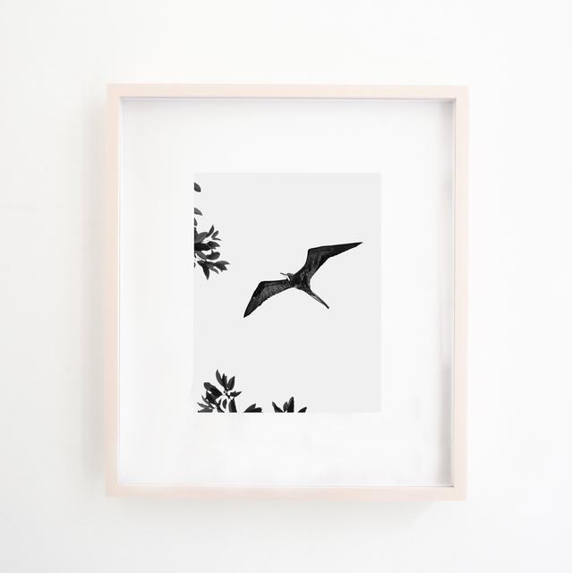 , 'Circling Bird,' 2018, Xippas
