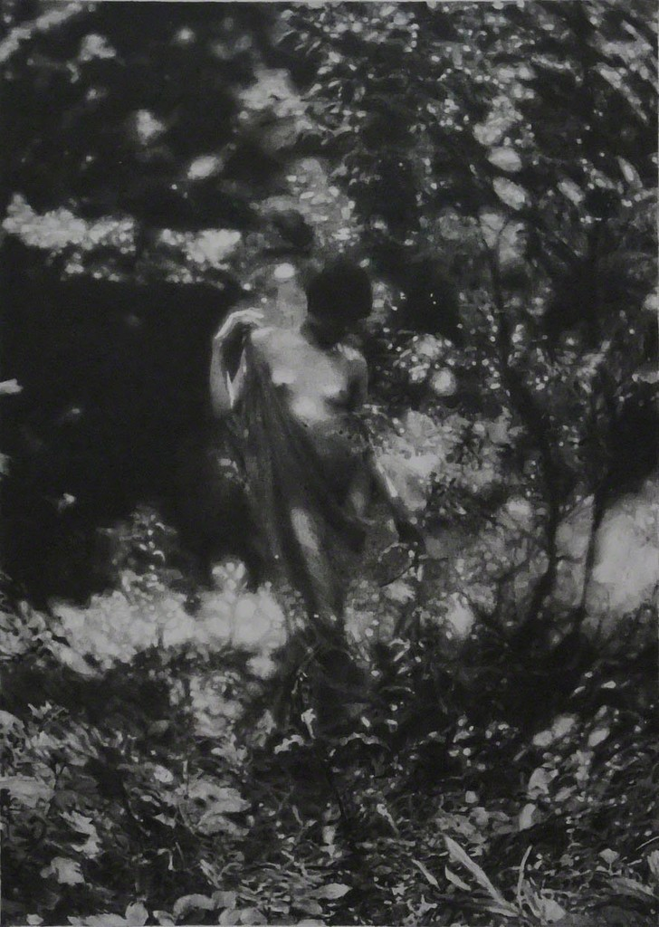 Richard Forster, 'American Pastoral (Charles J Cook),' 2011, Ingleby Gallery