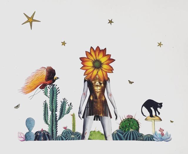 , 'Cactaceae,' 2019, Wolf & Nomad