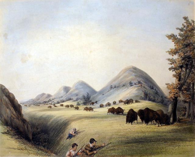 George Catlin, 'Buffalo Hunt Approaching in a Ravine', 1844, Kiechel Fine Art