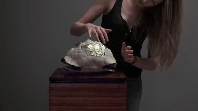 , 'Tortoise Shell,' 2018, Sulger Buel Gallery