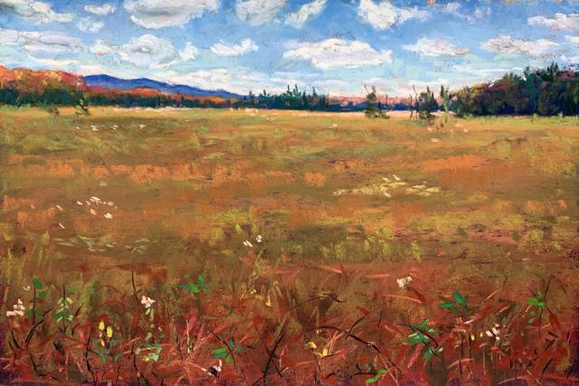 , 'Day 24: Spring Bog ,' February 2020, Keene Arts