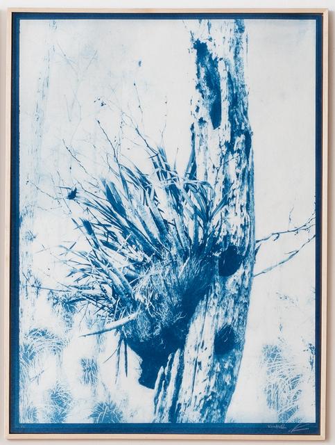 , 'Dream in Blue 3,' 2019, Litvak Contemporary