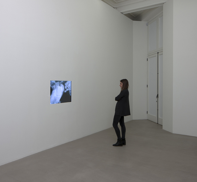 , 'D 11,' 1998-2002, Marian Goodman Gallery
